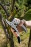 Секатор с храповым механизмом SmartCut Gardena 08798-20.000.00 - фото