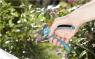 Секатор B/S (8854) Gardena 08854-20.000.00 - фото