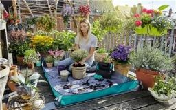 Коврик для посадки растений, размер L 00507 - фото