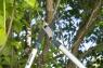 Сучкорез EnergyCut 750B 12007-20.000.00 - фото