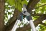 Сучкорез TeleCut 520-670 B 12005-20.000.00 - фото
