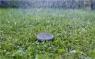 Датчик влажности почвы 01867-20.000.00 - фото