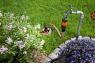 Колонка входная Gardena 02722-20.000.00 - фото