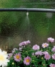 Микронасадка распыляющая (5 шт. в блистере) Gardena 01371-29.000.00 - фото